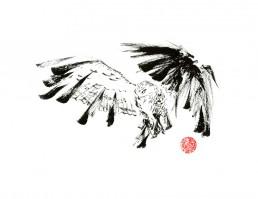 Fierce Owl fine art print by Rayna Lo